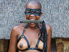 rough cuckold outdoor african sex lesson