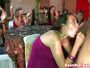 Latina bachelorette cumswallowing strippers sperm